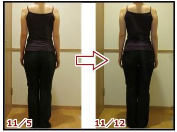 11月5日と11月12日の写真