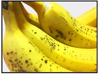 黒いバナナの画像